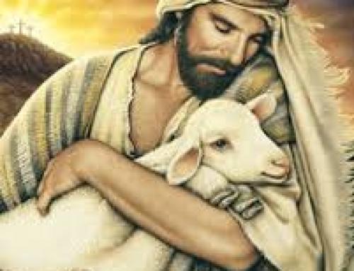 FRIENDS OF JESUS: REV. FR. SEBASTIAN SANNI